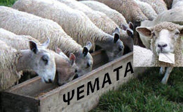 Image result for πρόβατα εκλογές
